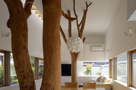 Casa_sustentada_por_arvore_Japao_Hironaka_Ogawa_arquitete_suas_ideias_01