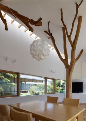 Casa_sustentada_por_arvore_Japao_Hironaka_Ogawa_arquitete_suas_ideias_02