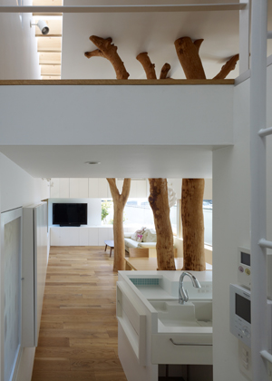 Casa_sustentada_por_arvore_Japao_Hironaka_Ogawa_arquitete_suas_ideias_03
