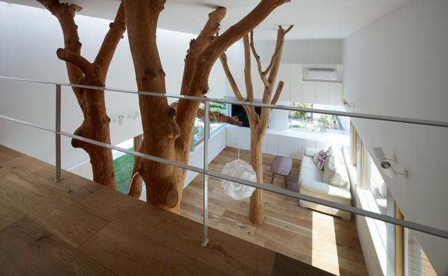 Paisagismo Decoração para jardins, árvores e troncos decorativos