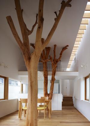 Casa_sustentada_por_arvore_Japao_Hironaka_Ogawa_arquitete_suas_ideias_05