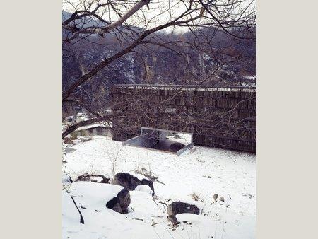 Biblioteca_Liyuan_China_madeira_arquitete_suas_ideias_03