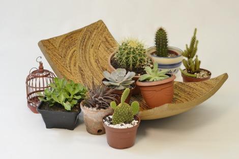 Centro_mesa_galeria_decoreba_arquitete_suas_ideias_sustentabilidade (2)