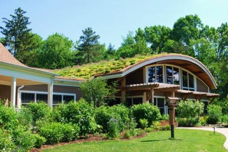 Ecotelhado verde planta decoracao arquitetura sustentabilidade arquitete suas ideias (1)