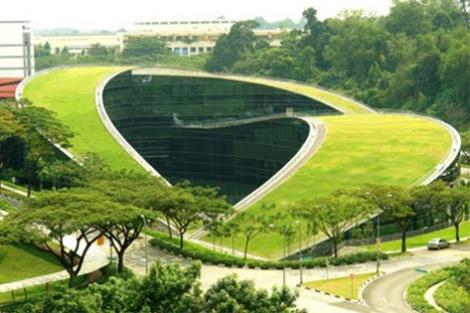 Ecotelhado verde planta decoracao arquitetura sustentabilidade arquitete suas ideias (4)