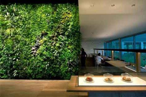 Ecotelhado verde planta decoracao arquitetura sustentabilidade arquitete suas ideias (6)