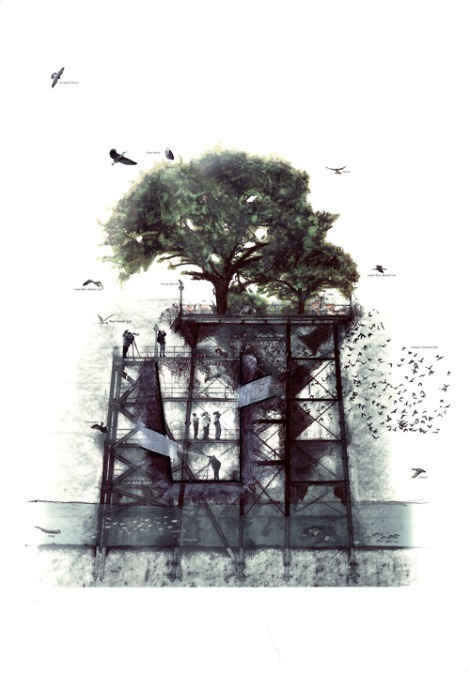 adaptacao arquitetura relfexao natureza sustentabilidade arquitete suas ideias 01